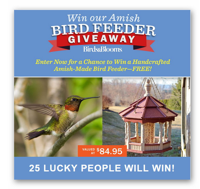 Birds & Blooms Amish Bird Feeder Giveaway