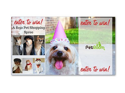 $150 Pet Shopping Spree Giveaway