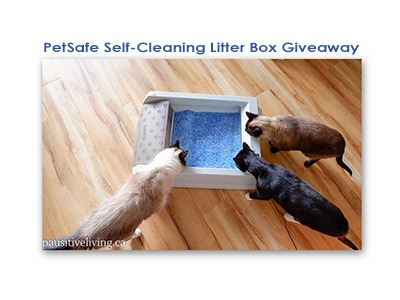 PetSafe Self-Cleaning Litter Box Giveaway