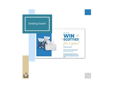 Win Scotties for a Year
