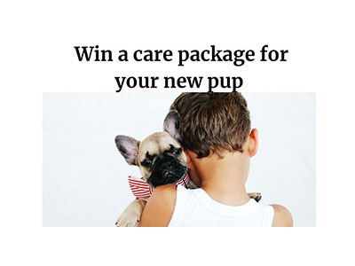 Win a Puptastic Prize Pack