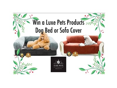 Win a Luxe Pets Products Dog Bed or Sofa Cover