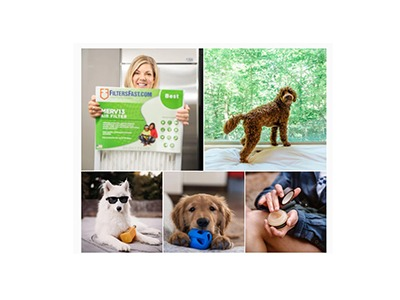 Pet Hair, Don't Care Sweepstakes